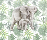 Jungle behang kinderkamer olifanten