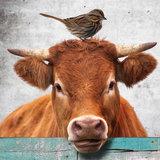 behang boerderijdieren detail