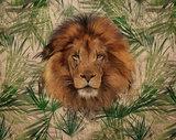fotobehang junglekamer leeuw